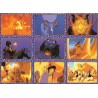 """Aladdin"" Set Complet 100 cartes Panini"